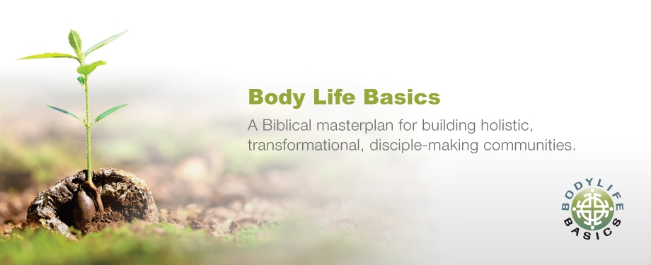 LSN262 web slide_Body Life Basics_920x375